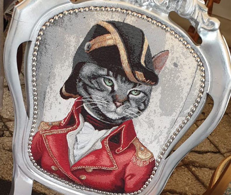 Tessuto gatto generale | sartoria MastroTappezziereIn